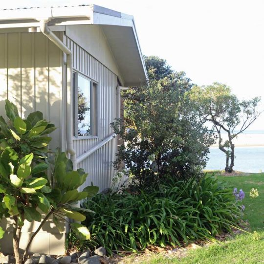 http://www.pakiriholidaypark.co.nz/wp-content/uploads/2016/12/BFM-3-540x540.jpg